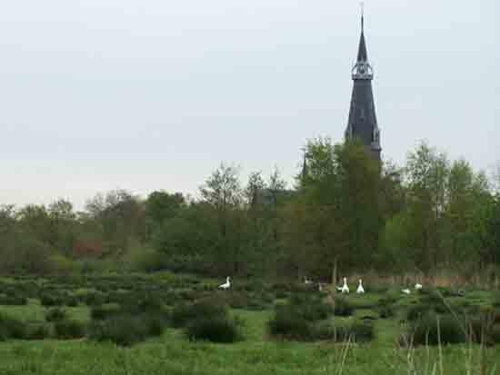 Kleine-Noord <br><br> 2340_Kleine_Noord_0770.jpg