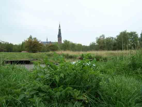Kleine-Noord <br><br> 2390_Kleine_Noord_0784.jpg