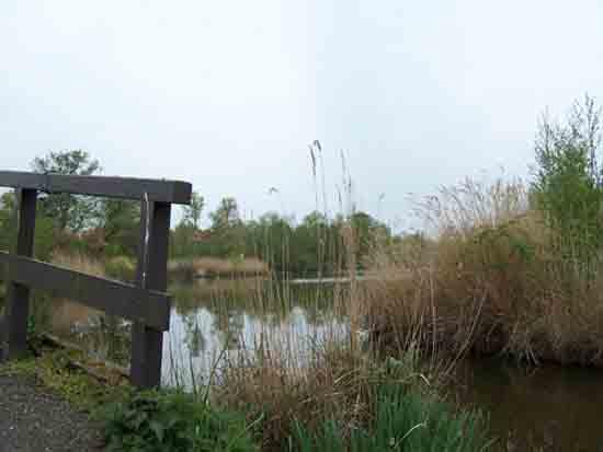 Kleine-Noord Kippebruggetje<br><br> 2430_Kleine_Noord_0790.jpg