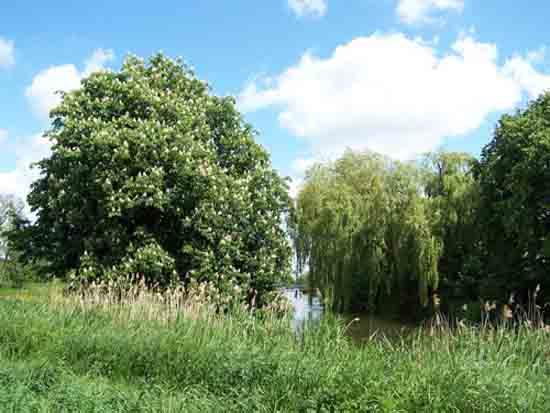Kleine-Noord Mooi landschap bij en uitzicht op Bovenkerk<br><br> 2470_Kleine_Noord_1315.jpg