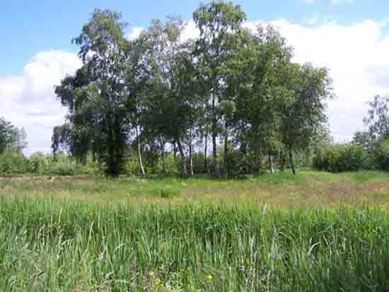Kleine-Noord <br><br> 2550_Kleine_Noord_1342.jpg