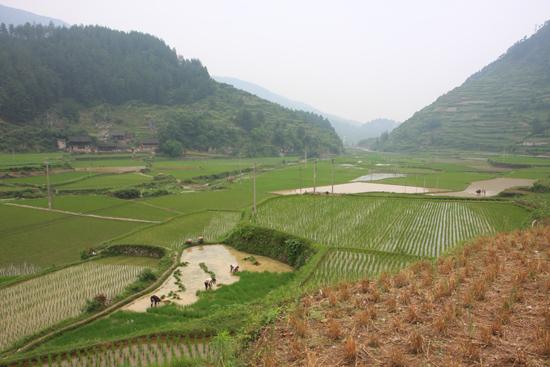 Shiqiao Shiqiao - Guizhou<br><br> 0180_1312.jpg