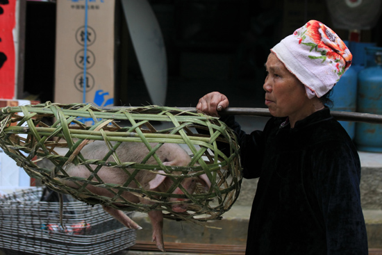 Datang Vrouw met 2 varkens op de schouder<br><br> 0800_1678.jpg