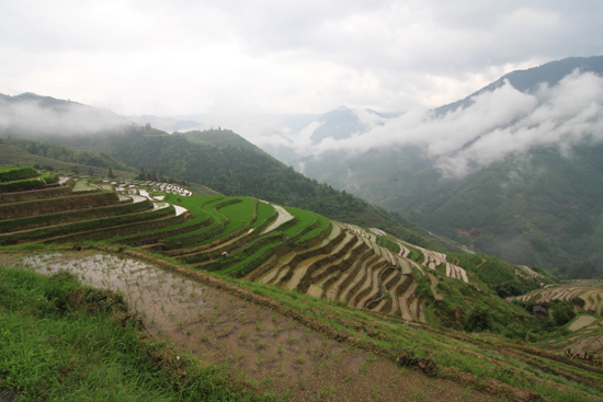 Longji Laaghangende bewolking tussen de bergen <br><br> 1790_2382.jpg