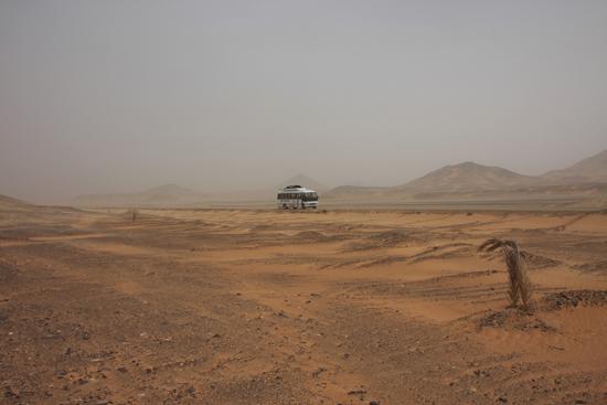 White-Desert Van Baharya naar Farafra 0680-From-Siwa-to-Farafra-2399.jpg