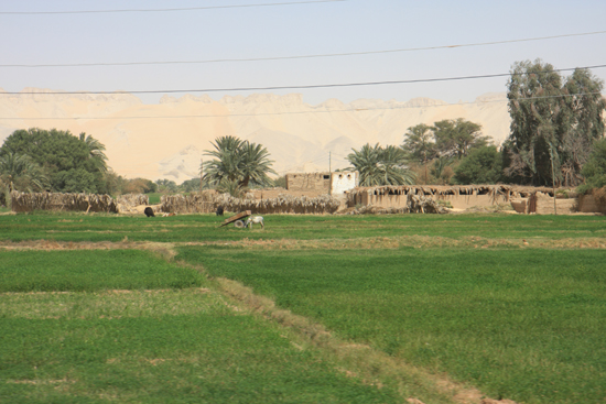Farafra Sahara landschap 0910-Farafra-Sahara-2828.jpg