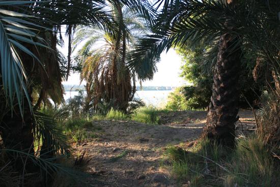 Elephantine2 Nubisch dorpje op Elephantine Island 1870-Elephantine-Island-Nubisch-dorp-3925.jpg