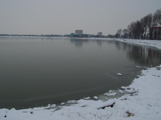 Min12 Prachtig ijs om te schaatsen op Hoornse Hop 370_4973.jpg