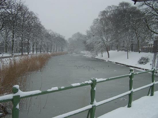 Hoornsneeuw Draafsingel 500_4754.jpg