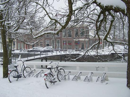 Hoornsneeuw Oude Munniksveld 510_4757.jpg