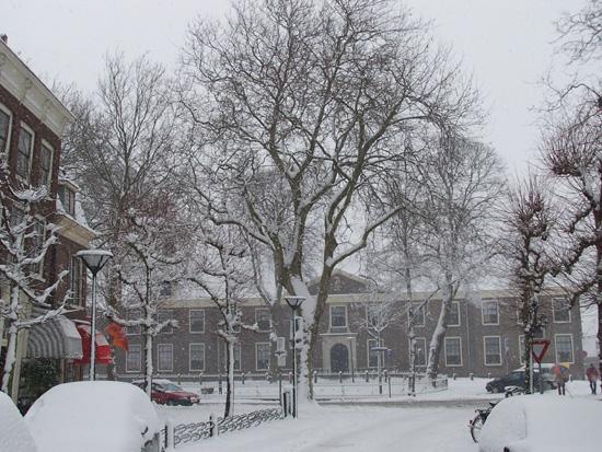 Hoornsneeuw Gedempte Turfhaven 550_4762.jpg