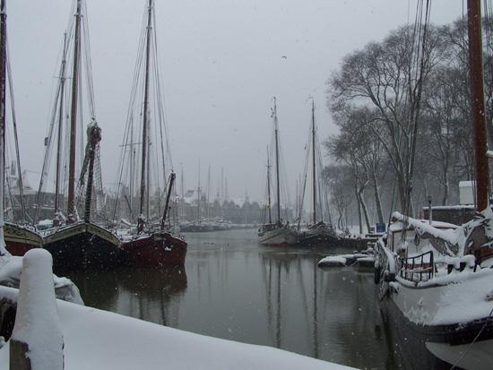 Hoornsneeuw Haven Hoorn 700_4798.jpg