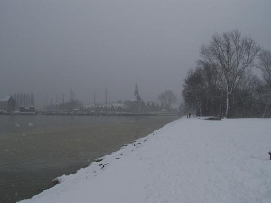 Hoornsneeuw Julianapark 780_4811.jpg