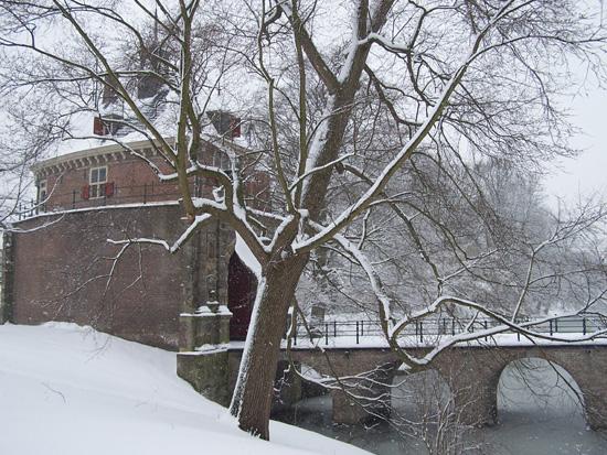 Hoornsneeuw Draafsingel 860_4836.jpg