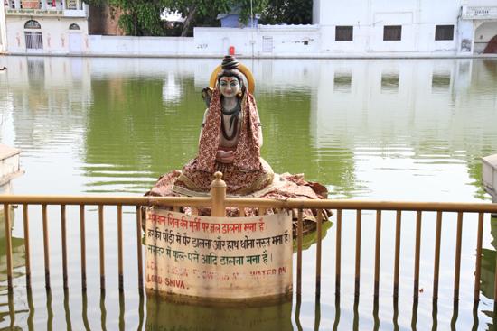 Amritsar2 Shiva in de Durgiana tempelvijver <br><br> 0300-Amritsar-Durgiana-tempel-2541.jpg