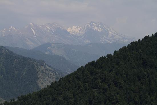 Pahalgam1 De eerste besneeuwde bergtoppen bij het bereiken van de Kashmir vallei<br><br> 0610-Naar-Pahalgam-2914.jpg