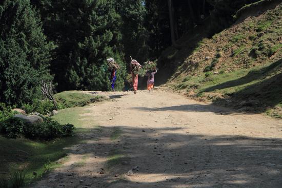 Pahalgam2 <br><br> 0670-Pahalgam-Kashmir-2969.jpg
