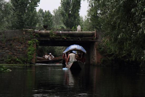 Srinagar1 Vroeg uit de veren: boottocht naar de drijvende markt om 5 uur in de ochtend<br><br> 0880-Nagin-Lake-Srinagar-Kashmir-3177.jpg