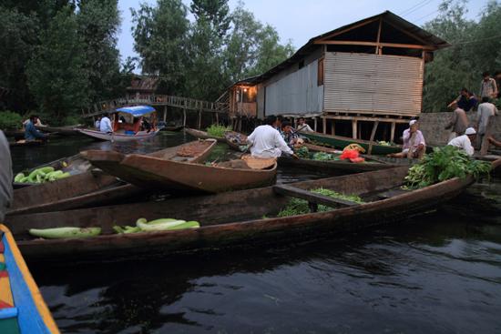 Srinagar1 De eerste boten met allerlei groenten op de drijvende markt <br><br> 0890-Nagin-Lake-Srinagar-Kashmir-3180.jpg
