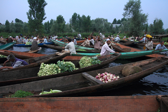 Srinagar1 Een drukte van belang - erg leuk om te zien <br><br> 0940-Nagin-Lake-Srinagar-Kashmir-3219.jpg