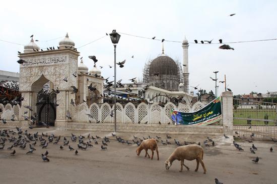 Srinagar2 Srinagar<br>Hazratbal moskee<br><br> 0990-Hazratbal-Moskee-Srinagar-Kashmir-3272.jpg