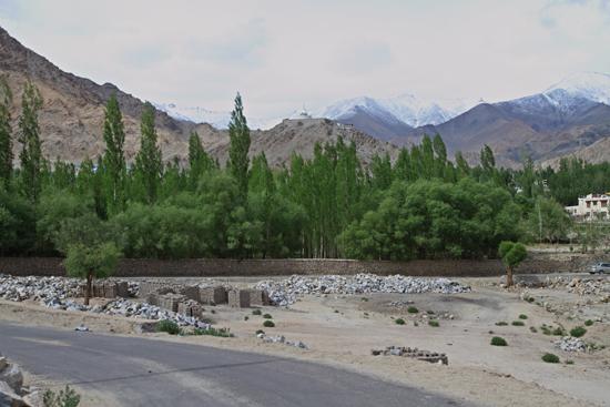 Alchi Verder richting Leh<br><br> 2520-Naar-Leh-Ladakh-4419.jpg