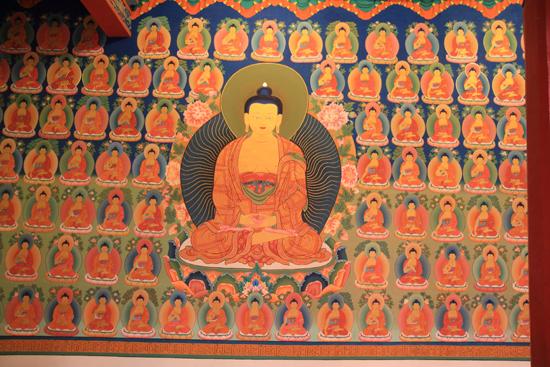 Shey <br><br> 2980-Hemis-klooster-Ladakh-4685.jpg