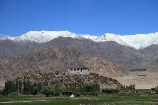 Stok Klooster nabij Leh<br><br> 3050-Omgeving-Leh-4703.jpg