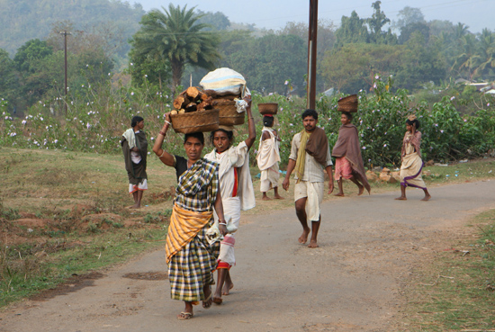 Adivasi-Tour3 Adivasi - tribes walking from the hillstations to the weekly market in Bissam Cuttack Bissam Cuttack 2440_4682.jpg