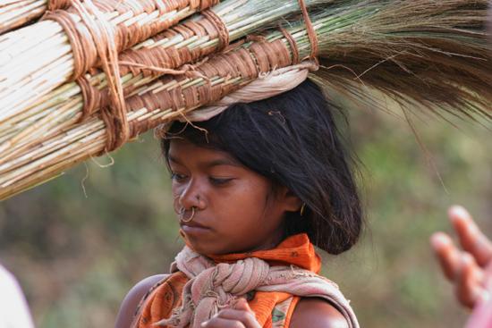 Adivasi-Tour3  Alle koopwaar wordt lopend vanuit de heuvels aangevoerd,en veelal door de dames 2470_4705.jpg