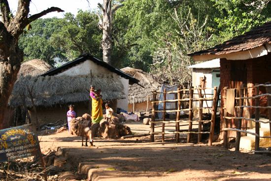 Adivasi-Tour6  Opnieuw een leuk Adivasi-dorpje in de binnenlanden van Orissa 2910_5148.jpg