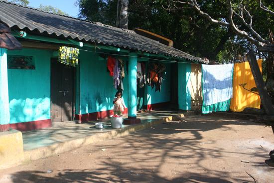 Adivasi-Tour6 Streetlife Kleurig straatbeeld 2950_5166.jpg