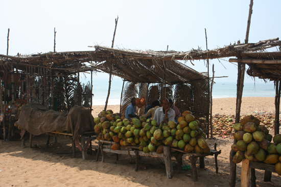 Konark Fruit for sale on the beach of Konark Fruitstalletje op het strand van Konark 4030_6132.jpg