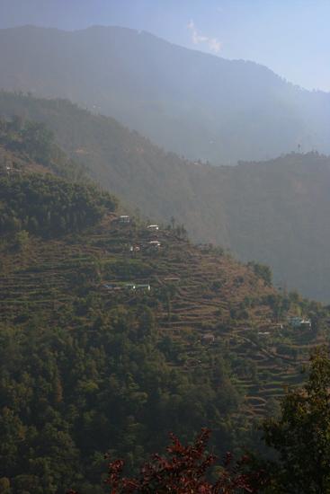 Khecheopari Mooi begroeide berghellingen<br><br> 0320_3593.jpg