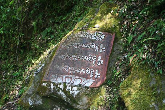 Khecheopari Steen bij de ingang van het tempelcomplex<br><br> 0350_3608.jpg