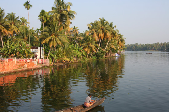 Backwaters  IMG_7218.jpg