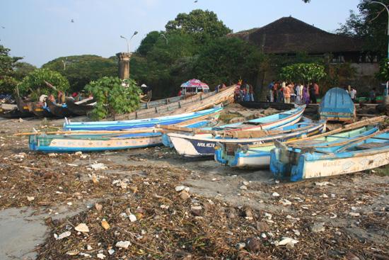 Cochin Zou zonder vuilnis mooi plaatje kunnen zijn IMG_7470.jpg