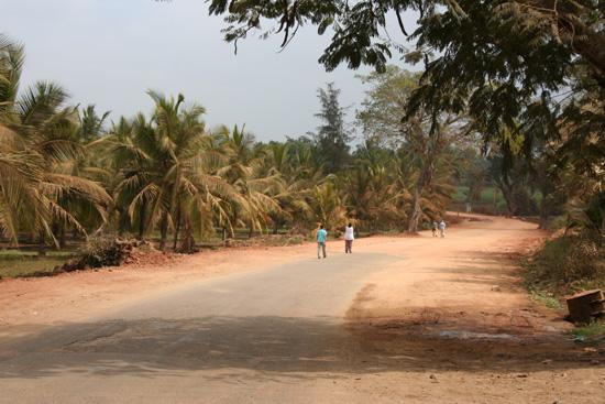 Belur Mooie omgeving voor een korte wandeling IMG_8425.jpg