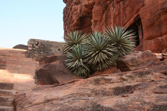 Badami De grotten bevinden zich hoog in de rotsen IMG_9166.jpg
