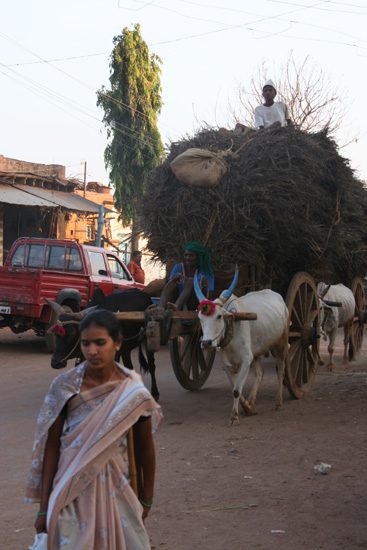 Badami Streetlife - zwaar beladen ossekar IMG_9223.jpg