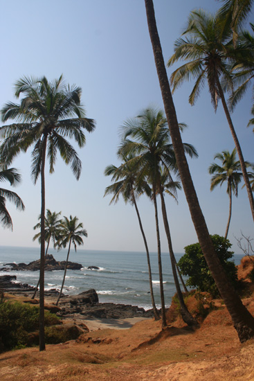 Goa  IMG_9405.jpg