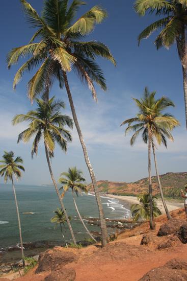 Goa  IMG_9406.jpg