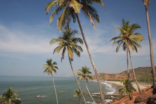 Goa  IMG_9407.jpg