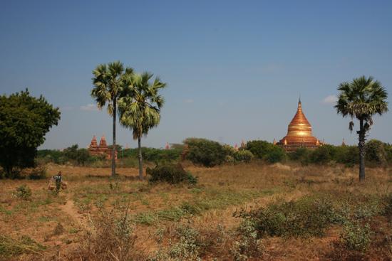 Bagan1 Bagan landschap   1840_6041.jpg