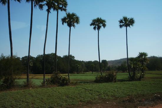 Kalaw1 Landschap tijdens de busrit naar Kalaw   2490_6425.jpg