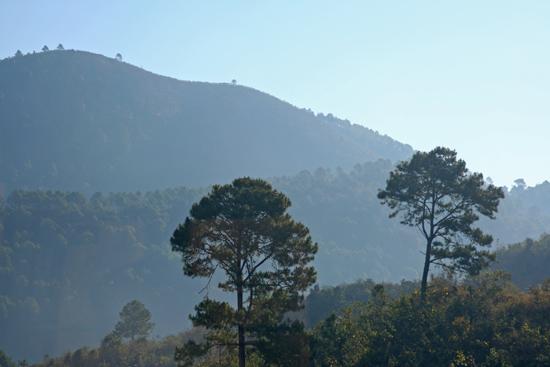 Kalaw1 Trekking langs de dorpen van de bergvolkeren   2520_6450.jpg