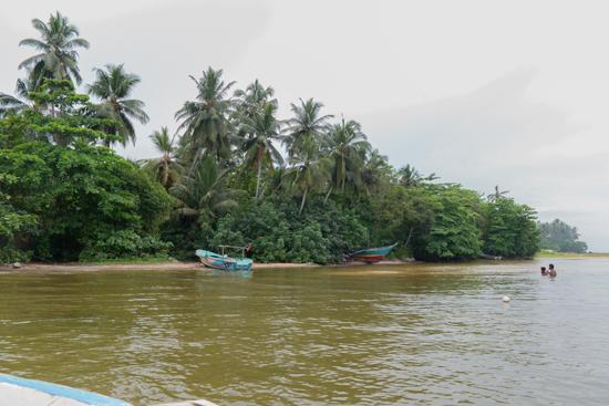 Balapitiya - Boottocht op de Madu rivier-0220