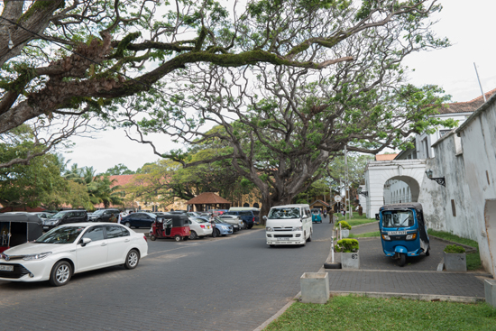 Galle-0430