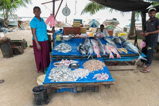 Vismarkt ergens onderweg-0580