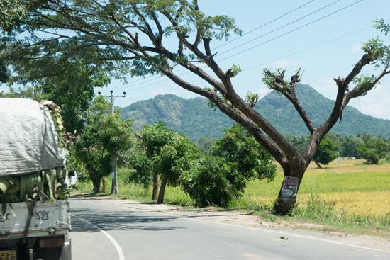 Onderweg naar Nuwara-Eliya-1730